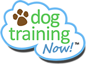 Dog Training Now- Dog Training Programs-Dog Training Now Logo