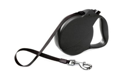 Three Great Reasons to Rethink That Retractable Leash